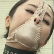 パンティマスクで変態仮面