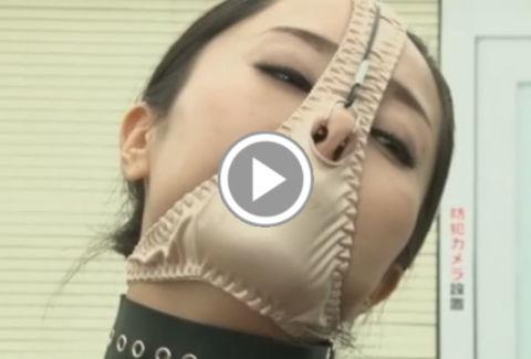 パンティマスクにされ鼻フックでメス豚顔にされた高学歴捜査官のPornhub動画のリンク