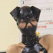 耳付きの全頭マスクでメス豚にされてしまったレズビアンをボンデージ拘束