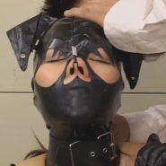 全頭マスクで鼻フックをされ顔面陵辱されるメス豚ペットの女