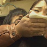 クロロホルムのハンカチで口と鼻を塞ぎ女性を気絶させ拉致
