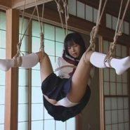 セーラー服の美少女が梁に吊るし緊縛される