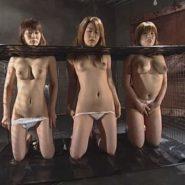 首枷をはめられた3人のレズビアン性奴隷達