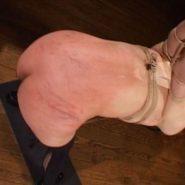 SM画像・鞭で叩かれた女の腫れた尻