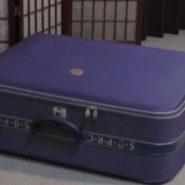スーツケースに閉じ込められた人妻