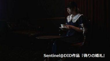 Sentinel@DID:猿轡の花嫁~誘拐シーン①~