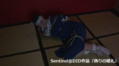 Sentinel@DID:猿轡の花嫁~監禁・目覚め①~