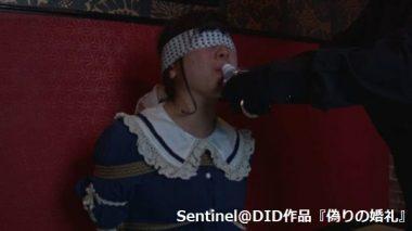 Sentinel@DID:猿轡の花嫁~監禁・目覚め②~