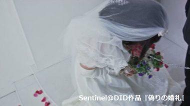 DID(damsel in distress):囚われの花嫁