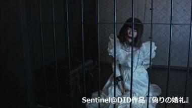 囚われの花嫁監禁飼育