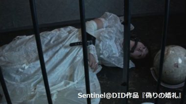 DIDフェチ(Damasel in distress)囚われのヒロインと地球儀