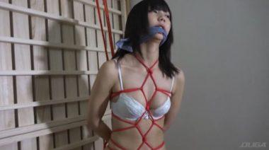 DIDフェチ作品『危機に陥った女たち』のヒロイン緊縛シーン